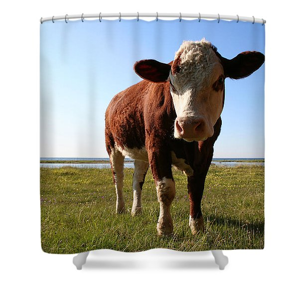 This Is My Grass Shower Curtain