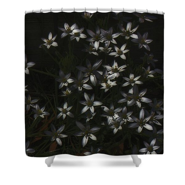 This Year's Bloom Shower Curtain