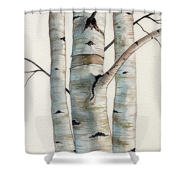 Three Birch Trees Shower Curtain