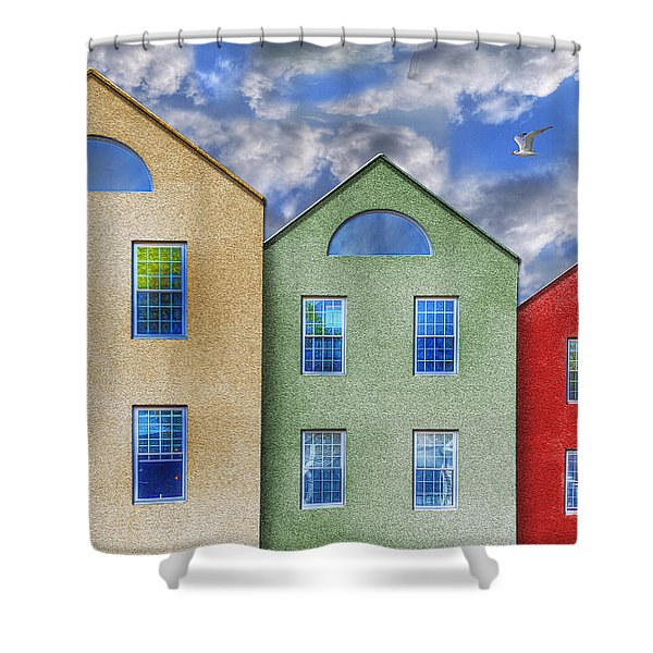 Three Buildings And A Bird Shower Curtain