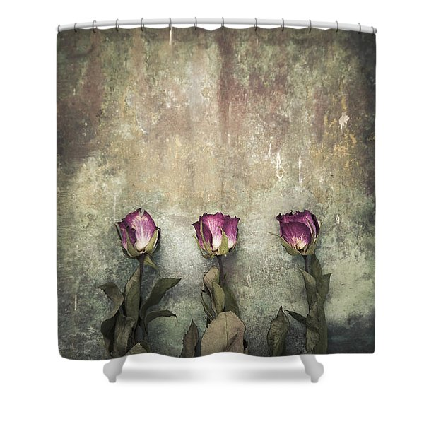Three Dried Roses Shower Curtain