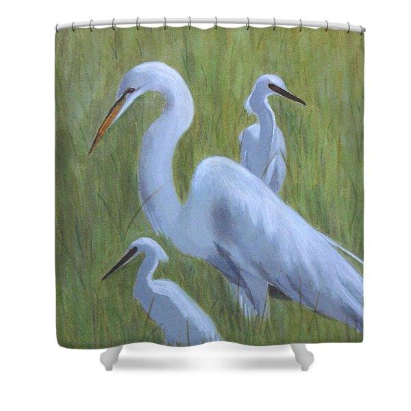 Three Egrets  Shower Curtain