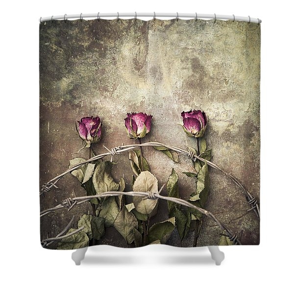 Three Roses And Barbed Wire Shower Curtain