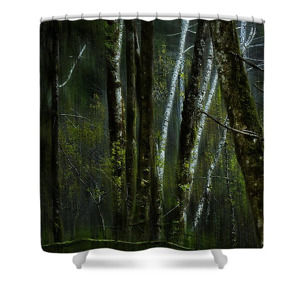 Through A Glass . . . Darkly Shower Curtain