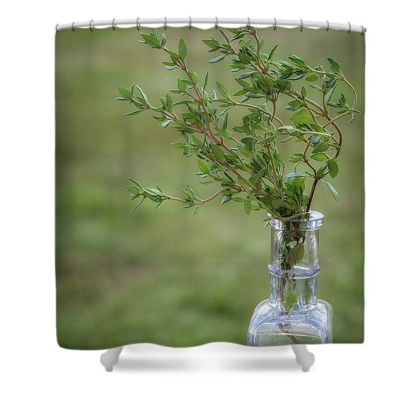 Thyme In A Bottle Shower Curtain