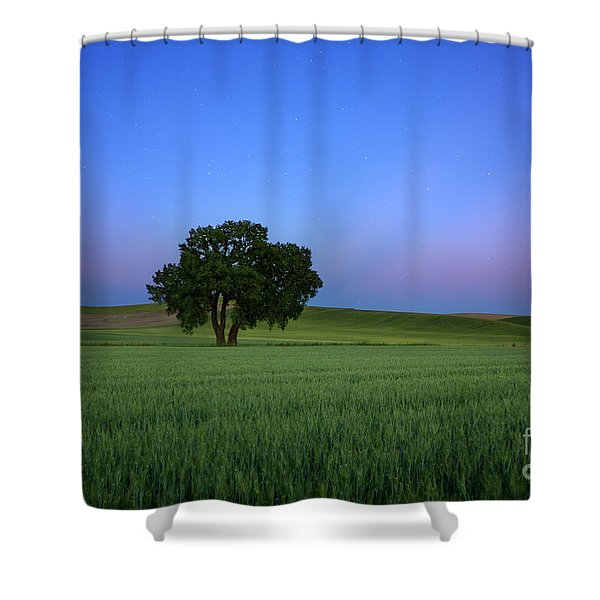 Timeless Evening Shower Curtain