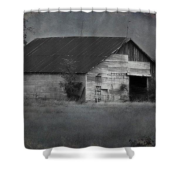 Tin Top Shower Curtain