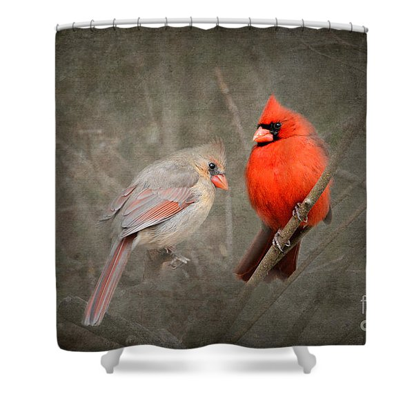 Together Again Shower Curtain