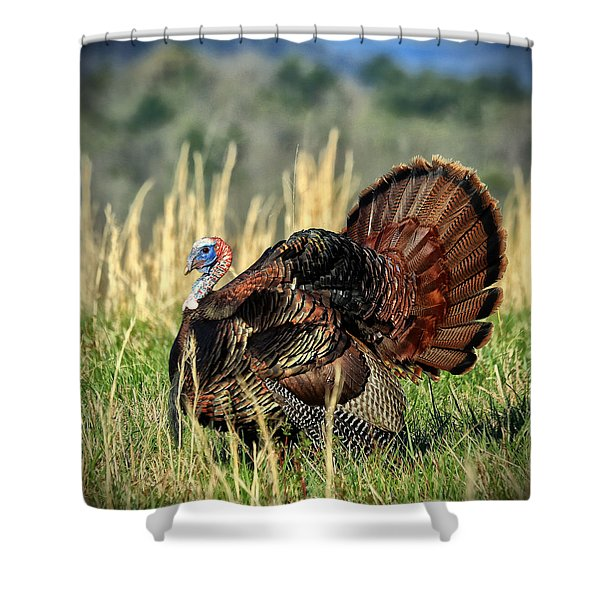 Tom Turkey Shower Curtain