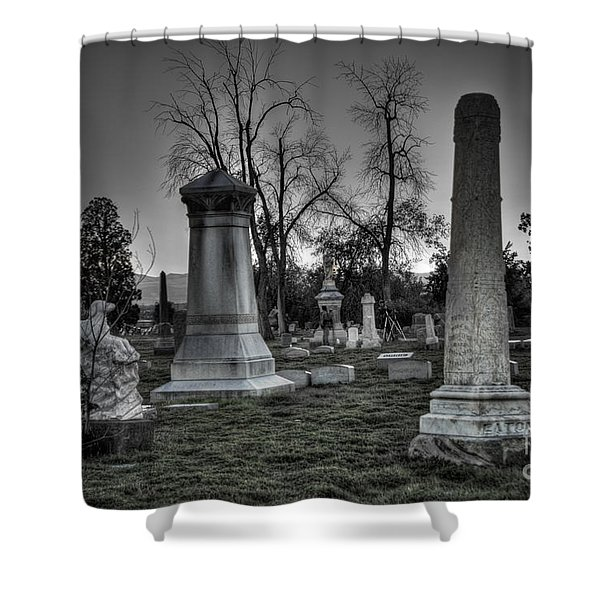 Tombstones And Tree Skeletons Shower Curtain