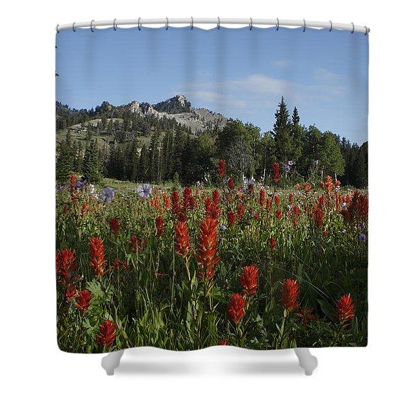 Tony Grove Lake Shower Curtain