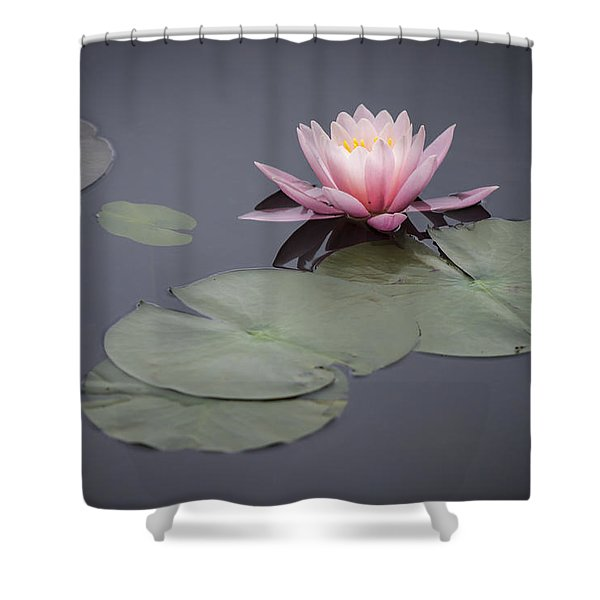 Touch Of Pink Shower Curtain