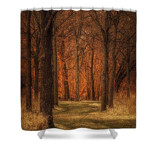 Nature's Cathedral Shower Curtain