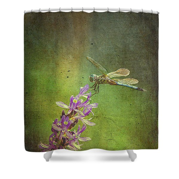 Treading Lightly Shower Curtain