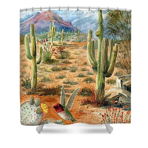 Treasures Of The Desert Shower Curtain