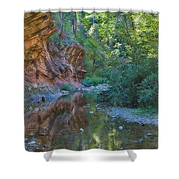 Shower Curtain featuring the photograph Tree Reflection by Mae Wertz