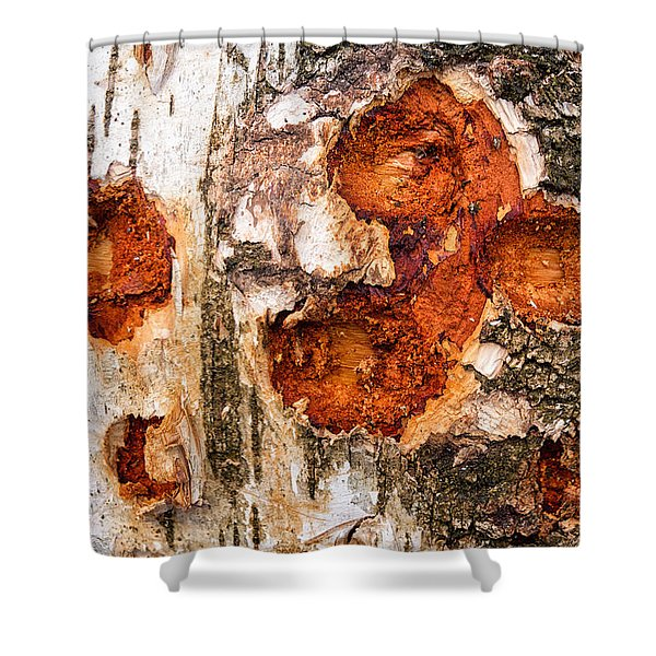 Tree Trunk Closeup - Wooden Structure Shower Curtain