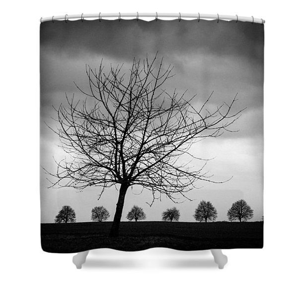 Trees Black And White Shower Curtain
