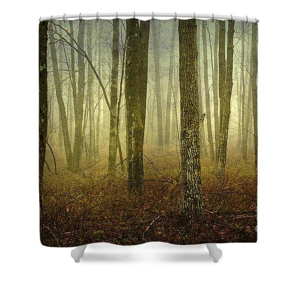 Trees II Shower Curtain