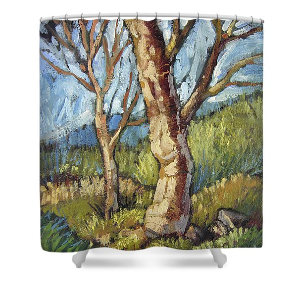 Trees In Spring Shower Curtain