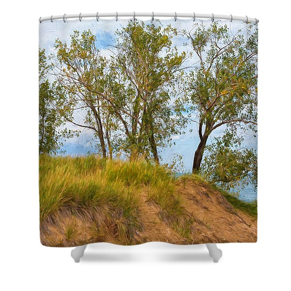 Trees On A Sand Dune Overlooking Lake Michigan Shower Curtain