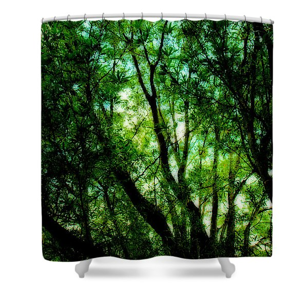 Treetops 1 Shower Curtain