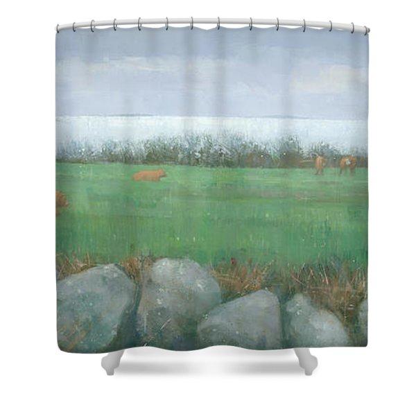 Tresco Cows Shower Curtain