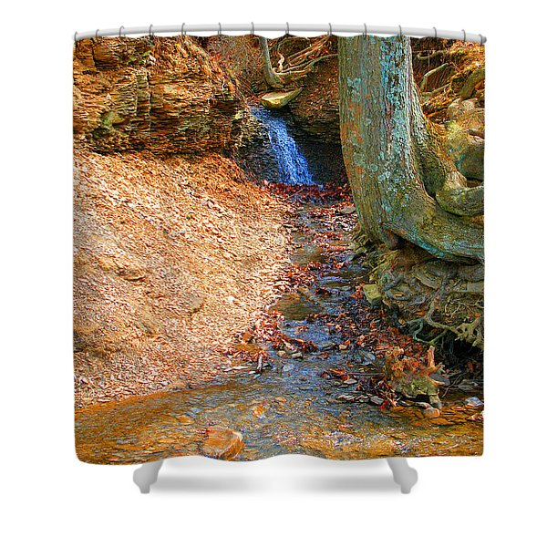Trickling Waterfall By Shellhammer Shower Curtain