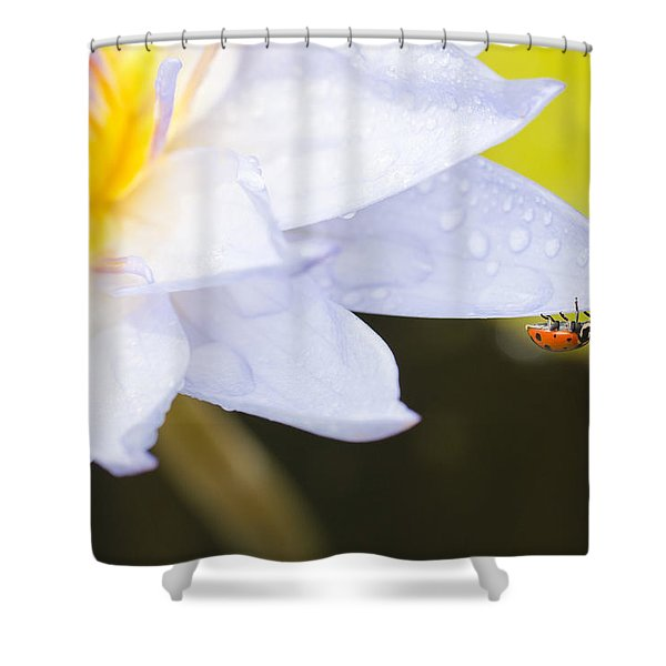 Tropical Adventure Shower Curtain