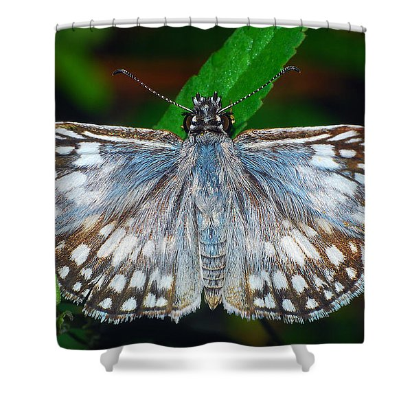 Tropical Checkered Skipper Shower Curtain