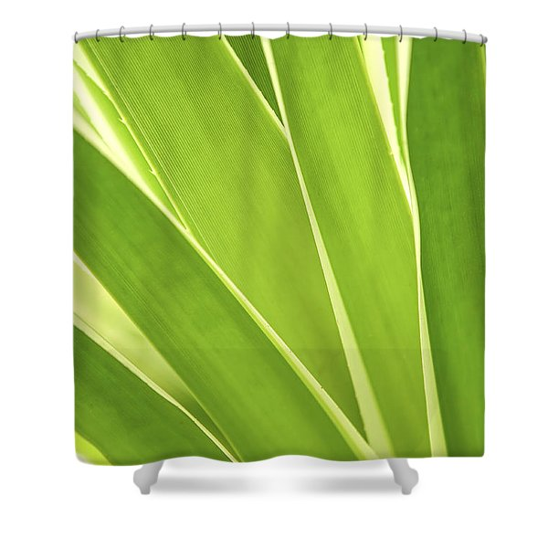 Tropical Leaves Shower Curtain