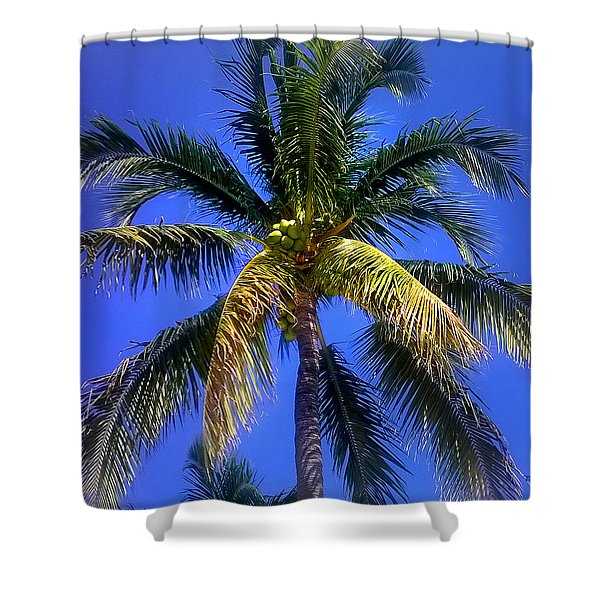 Tropical Palm Trees 8 Shower Curtain