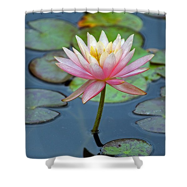 Tropical Pink Lily Shower Curtain