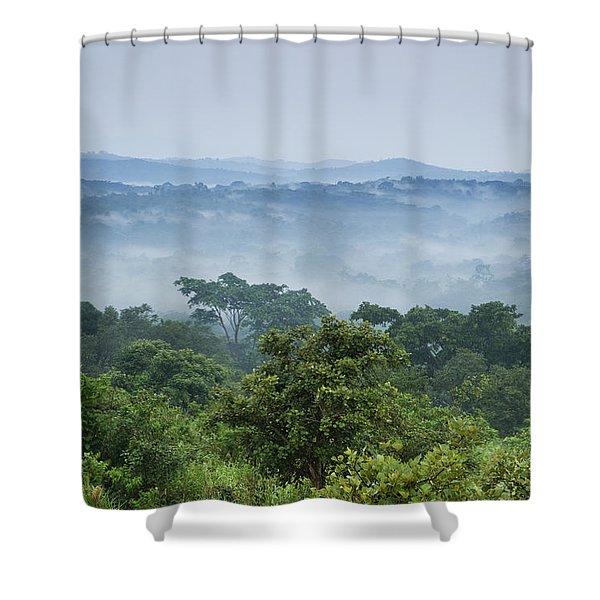 Tropical Rainforest Kibale Np Western Shower Curtain