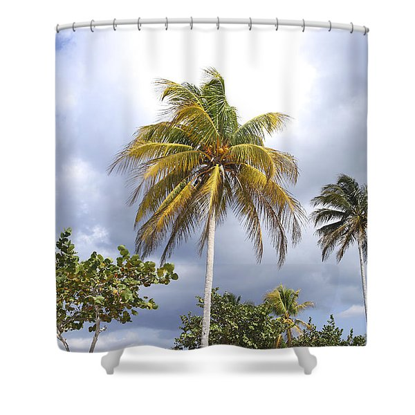 Tropical Spot With Clouds Shower Curtain