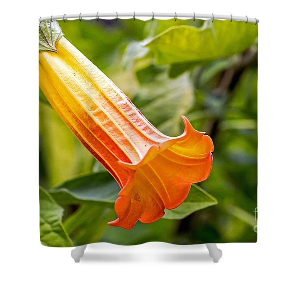 Trumpet Flower Shower Curtain