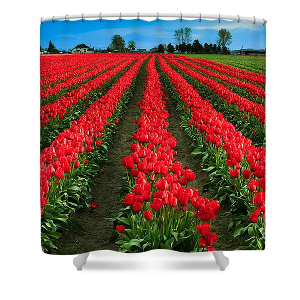 Tulip Cornucopia Shower Curtain