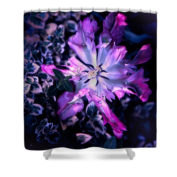 Tulip Fantasy Shower Curtain