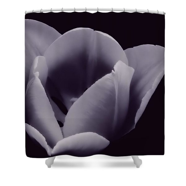 Tulip In Black And White Shower Curtain