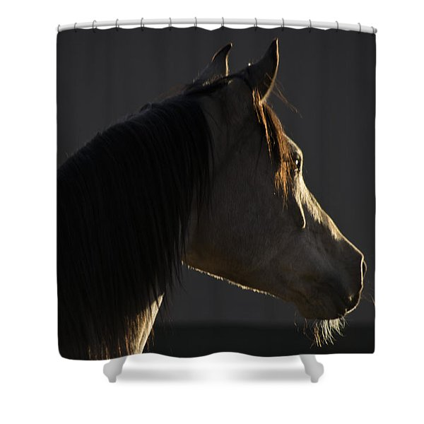 Tupelo Shower Curtain