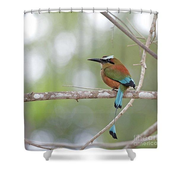 Turquoise Pendant.. Shower Curtain
