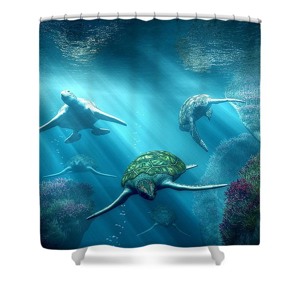 Turtle Alley Shower Curtain