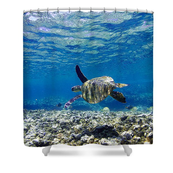 Turtle Cruise Shower Curtain