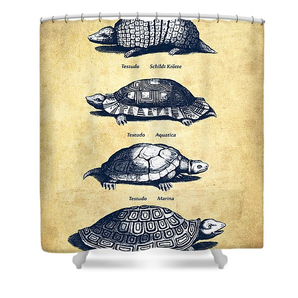 Turtles - Historiae Naturalis - 1657 - Vintage Shower Curtain