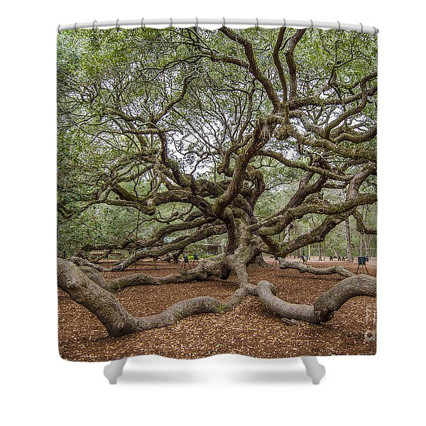 Twisted Limbs Shower Curtain