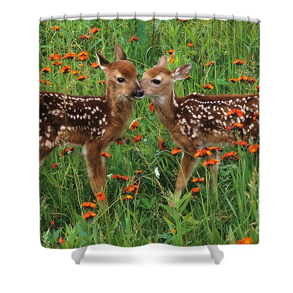 Two Fawns Talking Shower Curtain