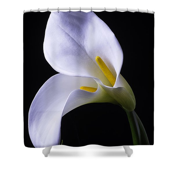 Two In Love Shower Curtain