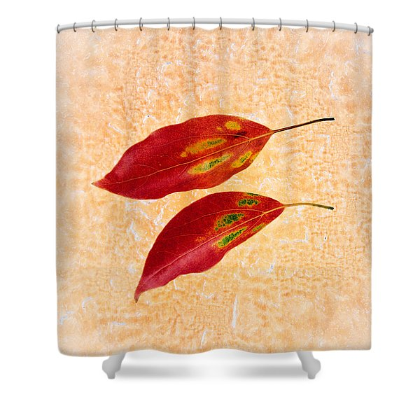 Two Red Leaves On Pink Background Shower Curtain