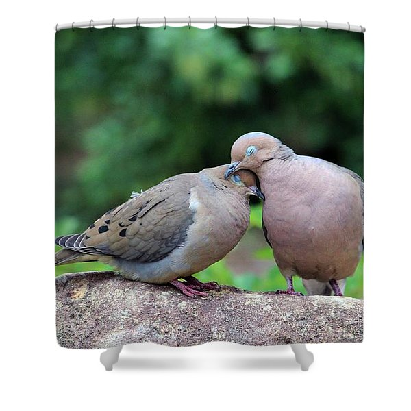 Two Turtle Doves Shower Curtain