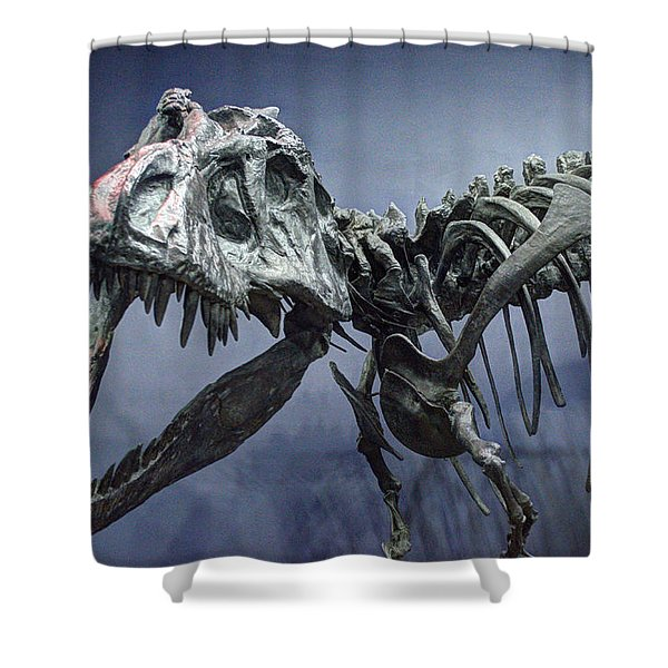 Tyrannosaurus Jane Shower Curtain
